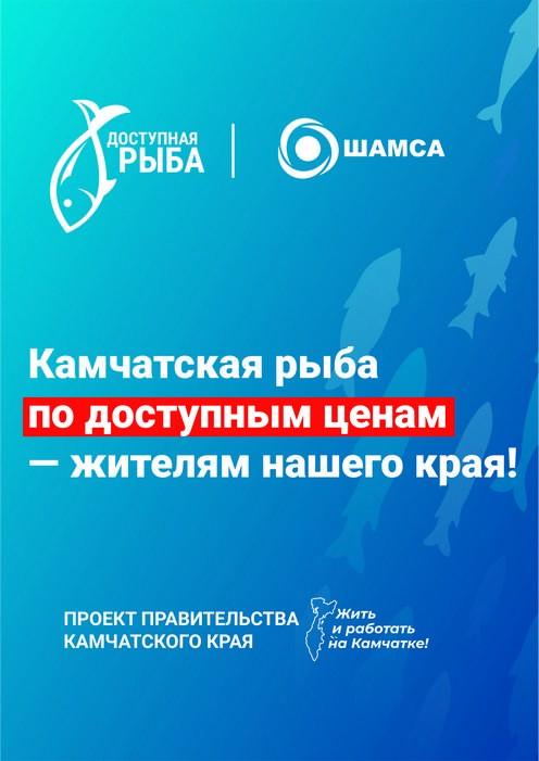 «Шамса» поддержала проект Правительства Камчатского края