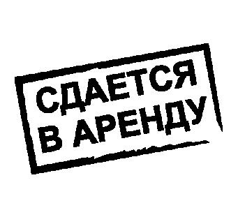 ТРЦ «Шамса» реализует свободные площади