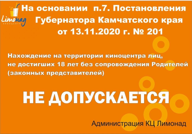 Постановление губернатора Камчатского края от 13.11.2020 №201